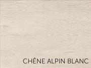 chêne alpin blanc